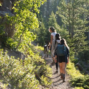 Three women hiking a trail with a dog